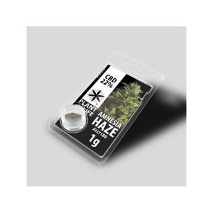 CBD Cannabis - I Migliori Prodotti secondo le Mode del Momento.